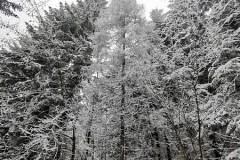 Zima w górach jest piękna