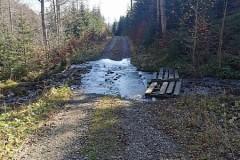 Potok przepływa przez szlak