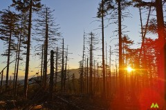 Ostatnie promienie słońca