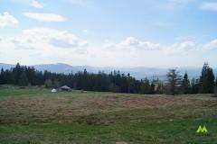 Panorama z polany
