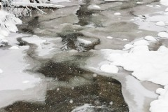Sporo lodu