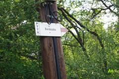 Kierunek Bendoszka ścieżką spacerową
