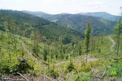 Zielony Beskid Żywiecki