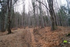 Strome podejście na początku szlaku