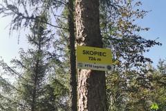 Kolejne oznaczenie z PTTK Legnica