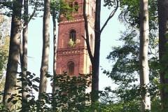 Pierwszy widok na Wieże widokową w Maciejowej