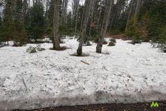 Sporo tego śniegu