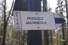 Czarnym szlakiem na Przełęcz Jałowiecką