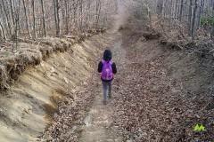 Na czarnym szlaku w stronę Zawoi