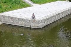 Hania dokarmia kaczki
